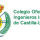 Logo del Colegio con nombre, COIICLM